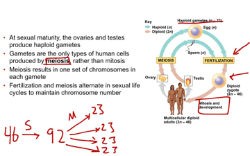 ap biology concept 1 1 Chapter 1 exploring life unifying themes pervade all of biology concept 11 biologists explore life from ap and advanced placement program are.