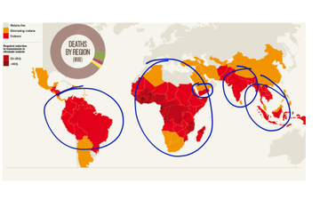 Causes Of Poverty- Spread Of Tropical Diseases